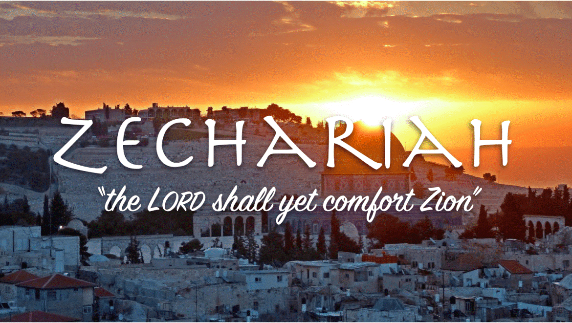 DECEMBER 25- TODAY'S READING FROM THE ONE YEAR BIBLE- ZECHARIAH 8:1-23;  REVELATION 16:1-21; PSALM 144:1-15; PROVERBS 30:29-31